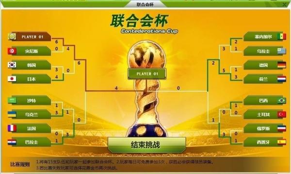 2014巴西世界杯联合会杯